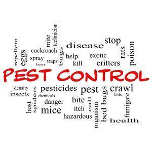 Pest Control Portland